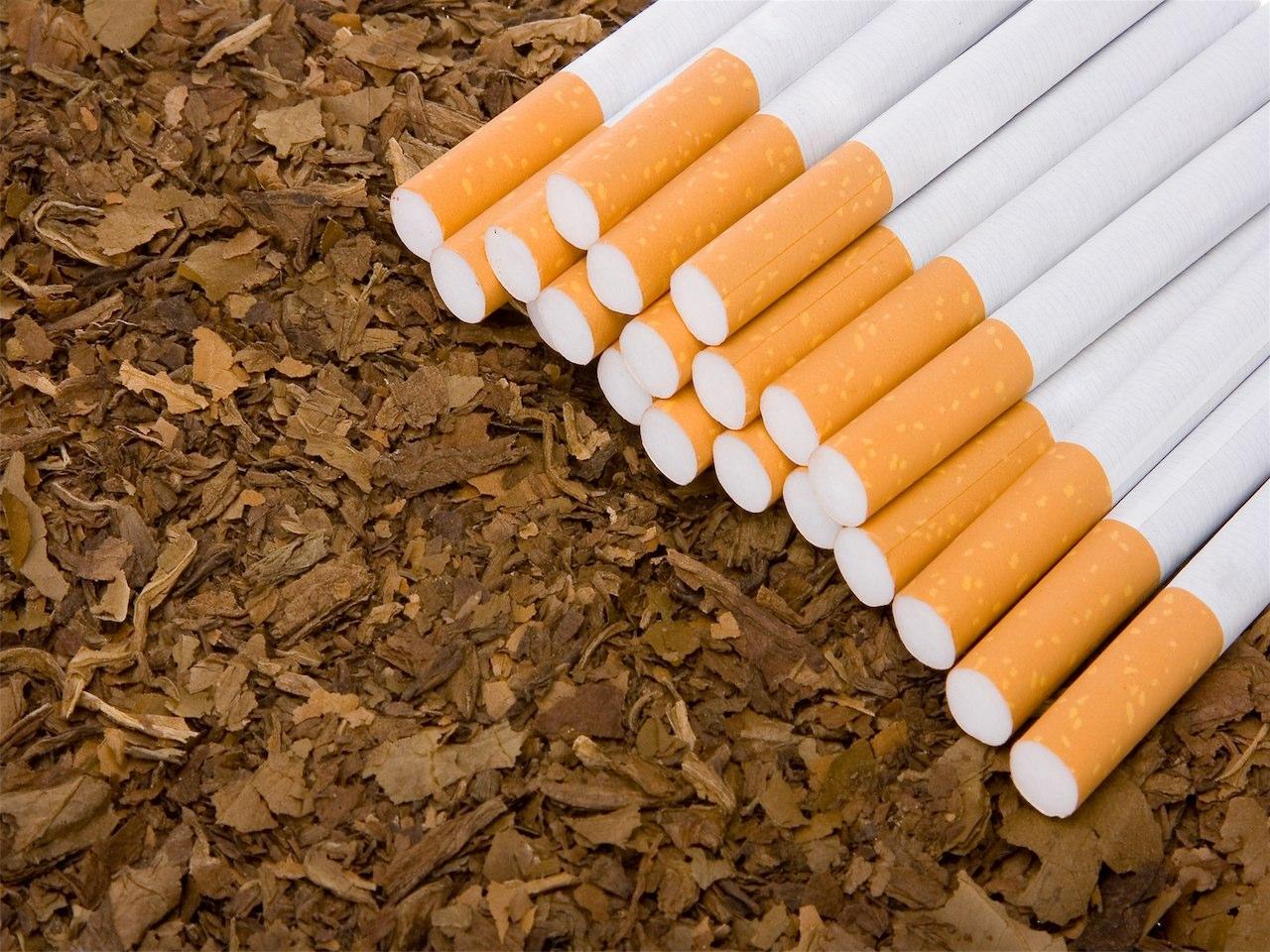 tutun pentru tigarete